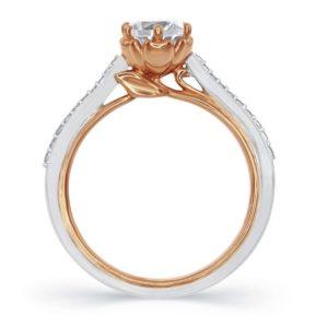 belle-ring