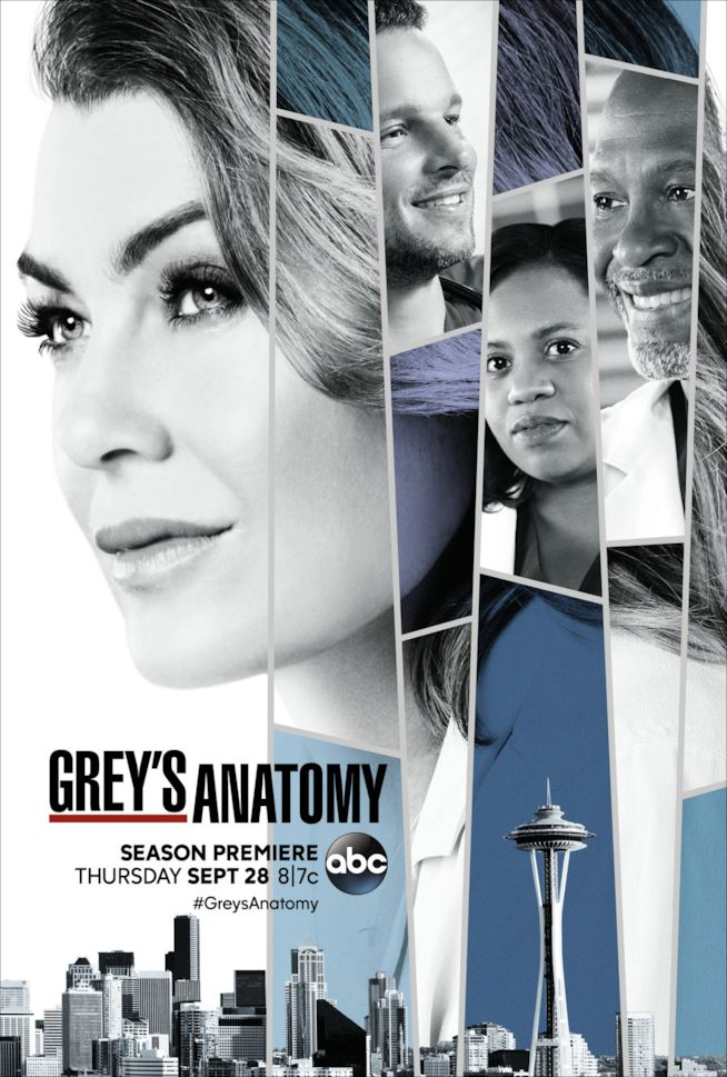 Grey's Anatomy 14 Poster